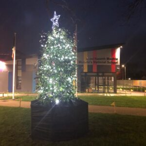Christmas tree outside school